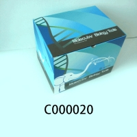 C000020