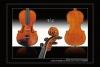 入門基礎款小提琴