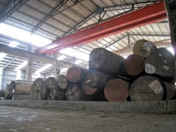 原木-建築裝潢角材的原料